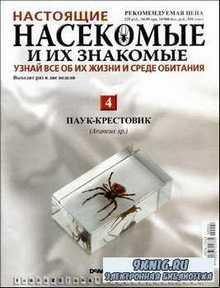Настоящие насекомые и их знакомые. Выпуск 4. Паук-крестовик