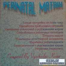 Козин В.В. - Перинатальные матрицы (аудиокнига)