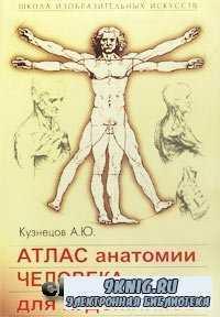 Атлас анатомии человека для художников.