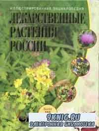 Лекарственные растения России.