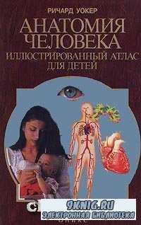 Анатомия человека. Иллюстрированный атлас для детей.