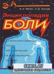 Анатомия центральной нервной системы.