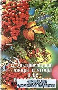 Дикорастущие плоды и ягоды и их переработка.