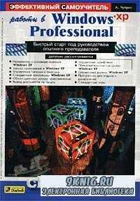 Эффективный самоучитель работы в Windows XP Professional.