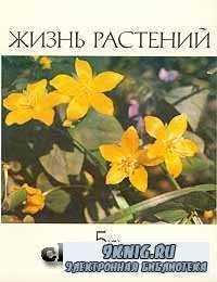 Жизнь растений. Энциклопедия в шести томах. Том 5. Часть вторая. Цветковые растения.