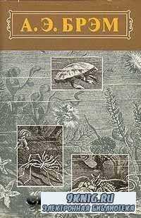 А. Э. Брэм. Жизнь животных. В трех томах. Том 3. Пресмыкающиеся. Земноводны ...