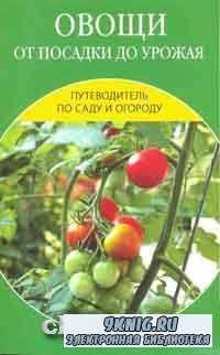 Овощи от посадки до урожая: сбор, хранение, переработка.