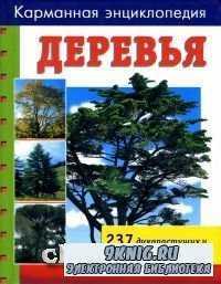 Деревья. 237 дикорастущих и орнаментальных видов.