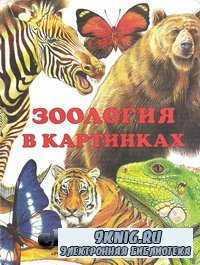 Зоология в картинках.