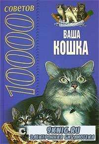 10000 советов. Ваша кошка.