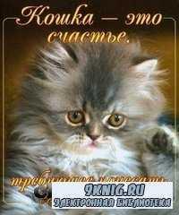 Кошка - это счастье, требующее почесать его за ушком.