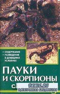 Пауки и скорпионы.