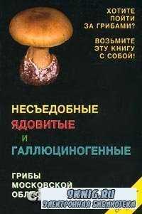 Несъедобные ядовитые и галлюциногенные грибы Московской области. Справочник ...