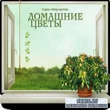 Домашние цветы - энциклопедия