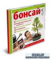Бонсай (Электронная энциклопедия) | 2006 | RUS | PC