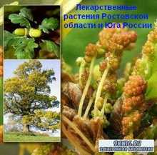 Ермолаева О.Ю. - Лекарственные растения Ростовской области и Юга России