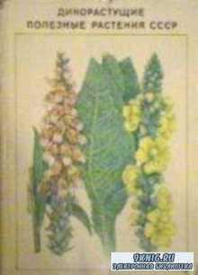 Дикорастущие полезные растения СССР