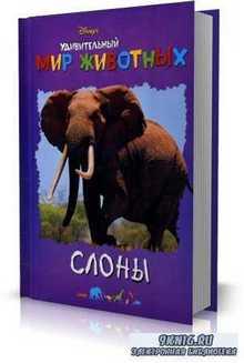 А. Кочаров - Удивительный мир животных. Слоны