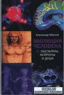 Эволюция человека. Обезьяны. Нейроны и душа