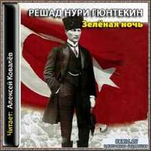 Гюнтекин Решад Нури - Зеленая ночь (Аудиокнига)