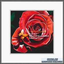 Red Red Rose JH-010 2006