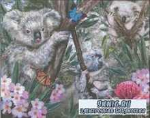 Koalas №OH 44647  2008