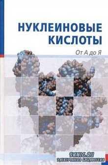 Нуклеиновые кислоты: От А до Я