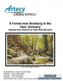 A Forest near Ilsenburg in the Harz
