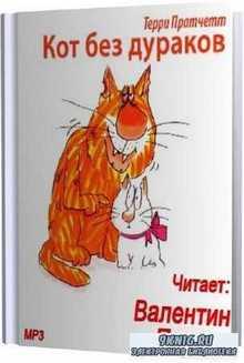 Терри Пратчетт. Кот без дураков (Аудиокнига) M4B