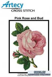 Pink Rose and Bud