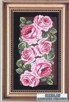 Roses №6546