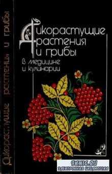 Нечаев Э.А. - Дикорастущие растения и грибы в медицине и кулинарии