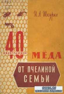 И.А. Шкурко - 40 килограммов меда от пчелиной семьи