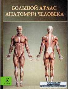 Винс Перез - Большой атлас анатомии человека (2013)