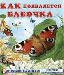 Гурина И.В. - Как появляется бабочка (2011)
