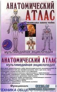 Анатомический Атлас. Техника массажа.  Мультимедийная энциклопедия