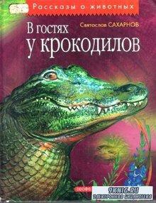 В гостях у крокодила