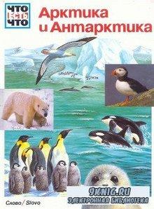 Что есть что. Арктика и Антарктика