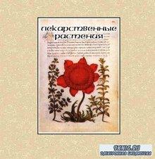 Лекарственные растения. Электронная энциклопедия