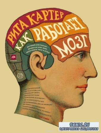 Рита Картер - Как работает мозг (2014)